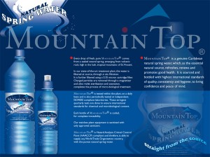 MountainTop Flyer (inside)
